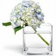 Vase photophore cube verre 8 x 8cm
