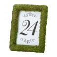 Location cadre photo mousse herbe gazon vert artificiel